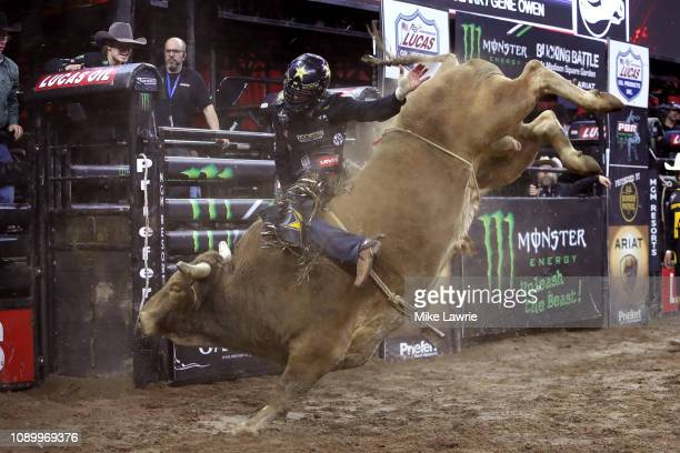 Cody Teel rides Hedoo during the PBR Unleash The Beast bull riding event at Madison Square Garden on January 04 2019 in New York City