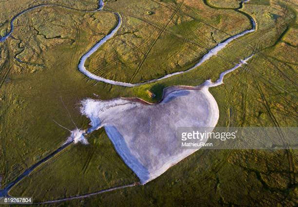 coeur dans les polders du mont saint-michel - meerkanal stock-fotos und bilder