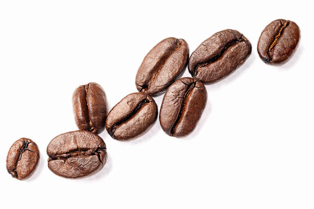 Coffe Beans Wall Art