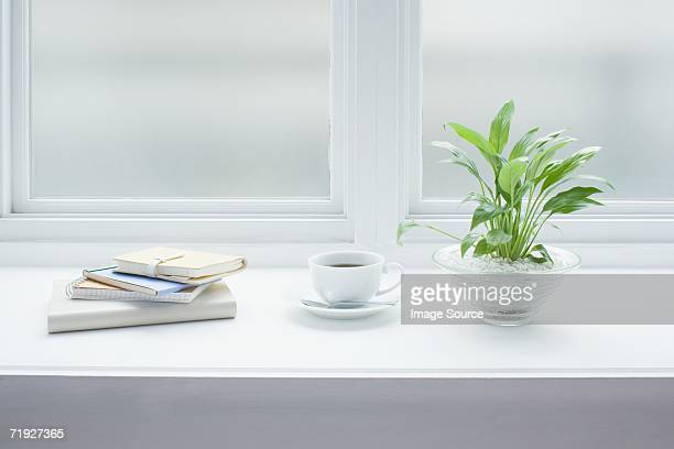 Coffee and a plant on windowsill