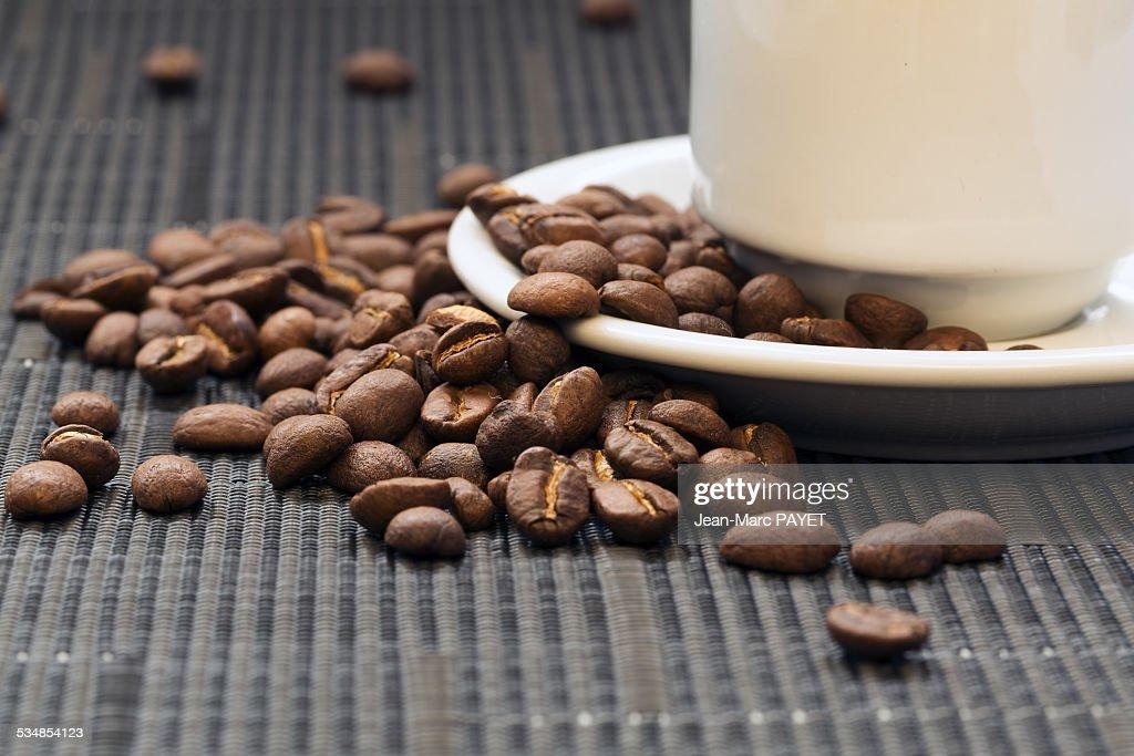 Coffee bean and coffee cup : Photo