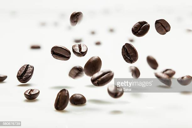 coffee bean hit on milk white board - roasted coffee bean stock photos and pictures
