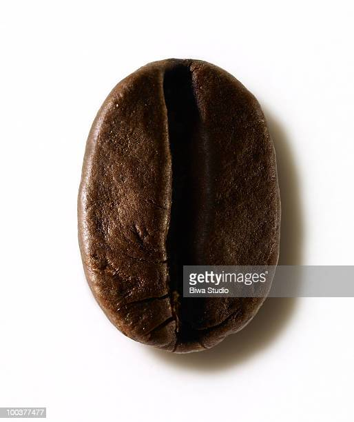 coffee bean portrait