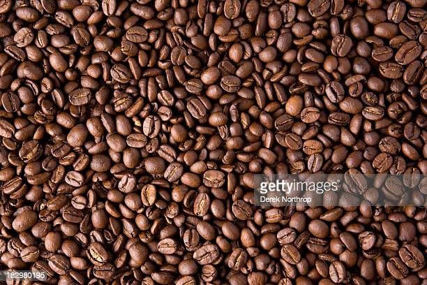 Coffee Bean Wallpaper