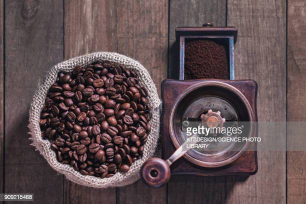 coffee beans and grinder view - coffee grinder stock photos and pictures