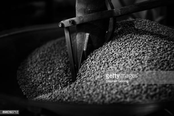 coffee beans at a coffee roasters - stephen gosling stock pictures, royalty-free photos & images