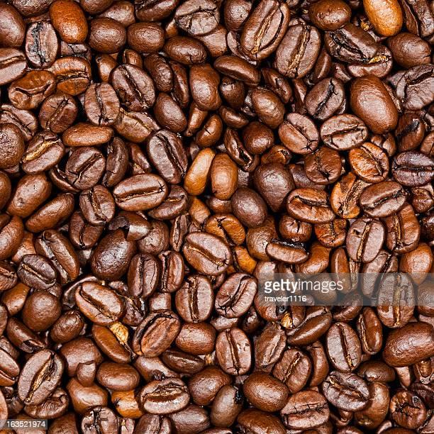 Grãos de café Plano aproximado