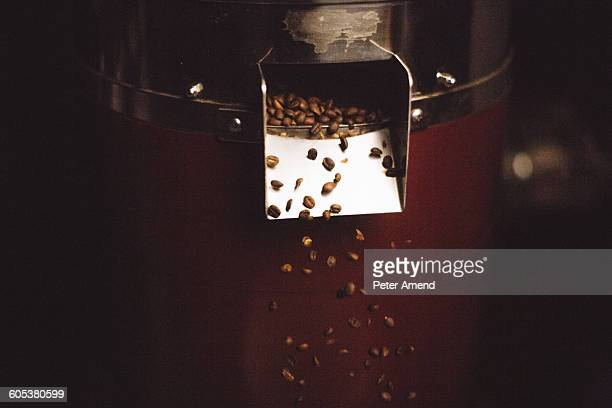 Coffee beans flowing from coffee roaster
