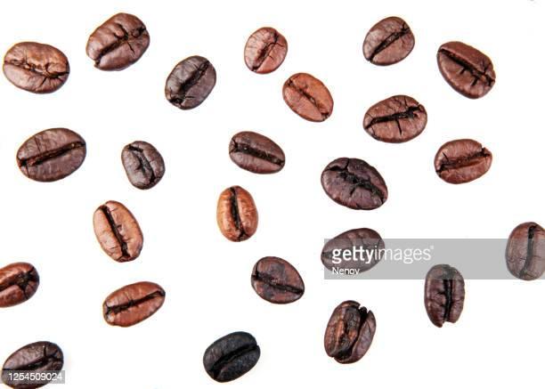 coffee beans isolated on white background - grain de café torréfié photos et images de collection