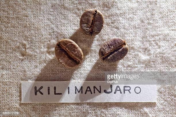 Coffee beans - Kilimanjaro