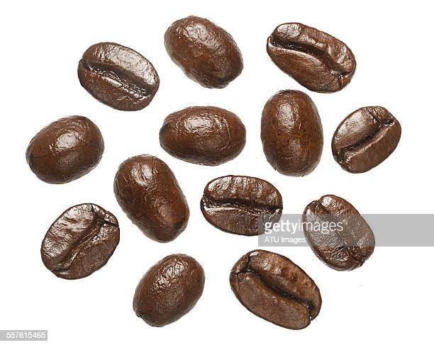 Coffee beans on light box