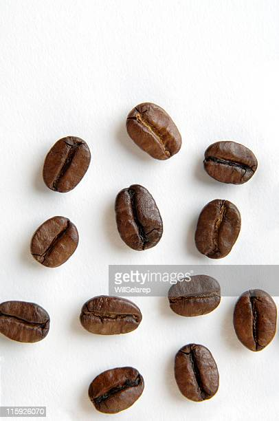 coffee beans - cereal plant stock pictures, royalty-free photos & images