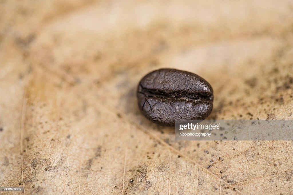 Kaffee Kaffeebohnen : Stock-Foto