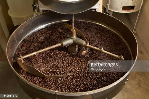 coffee beans roasting in industrial kettle - caffeine stock pictures, royalty-free photos & images