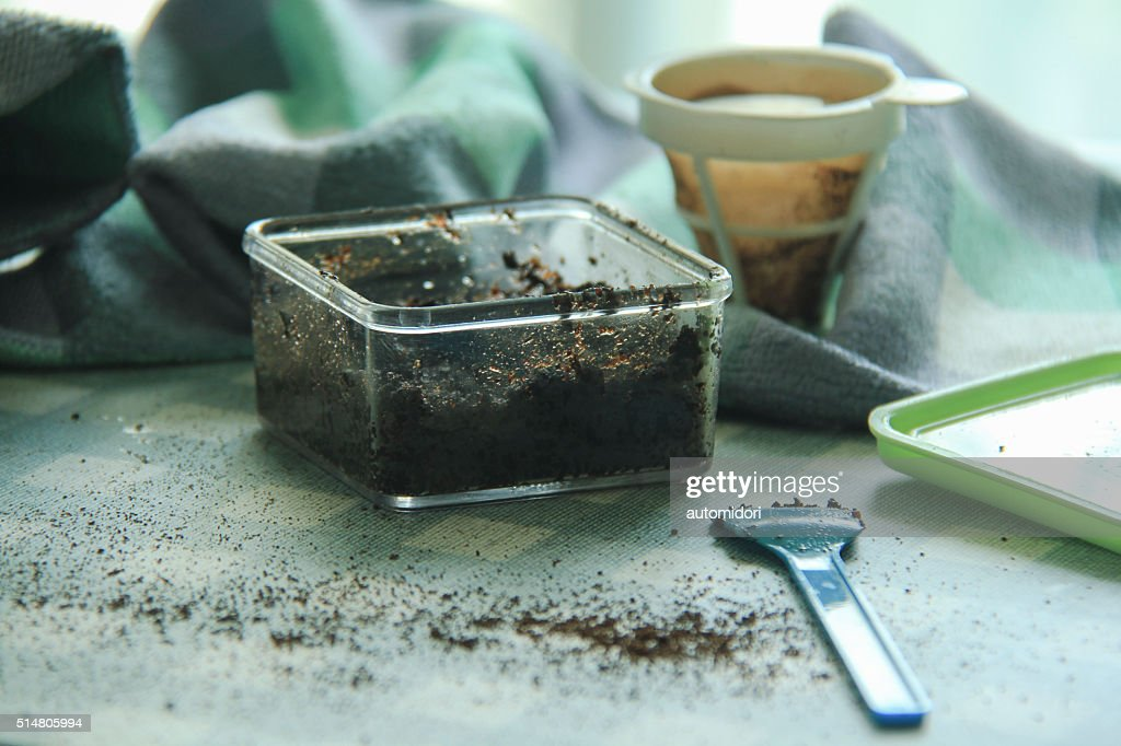 Coffee Face Scrub, Homemade : Stock Photo