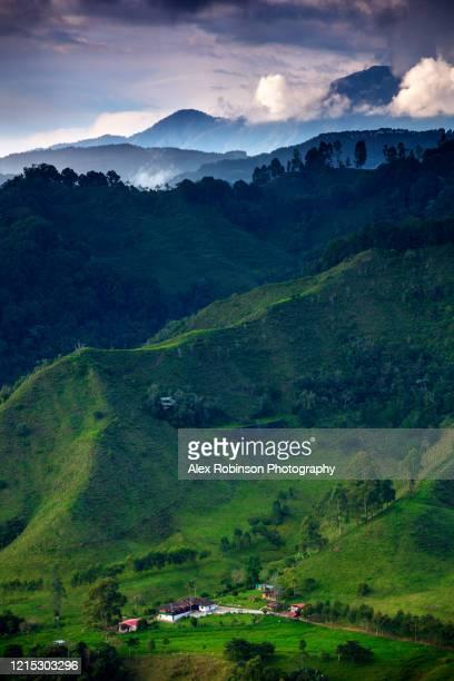 a coffee farm and ranch in the cocora valley - kolumbien stock-fotos und bilder