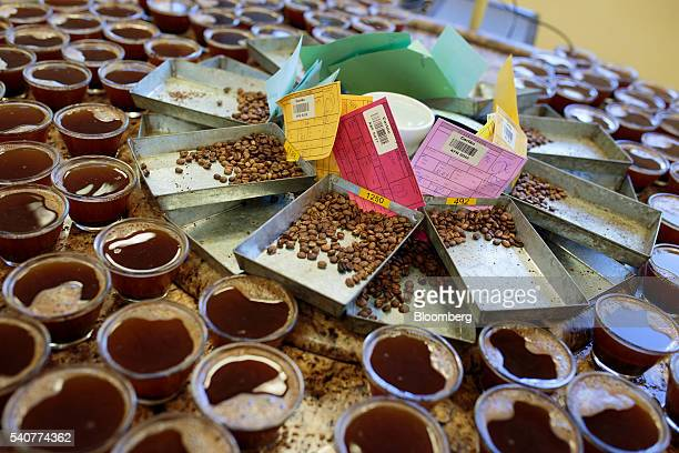 Coffee grains and drinks are separated for a quality test at Cooxupe's facility in the Minas Gerais state near Guaxupe Brazil on Tuesday June 14 2016...