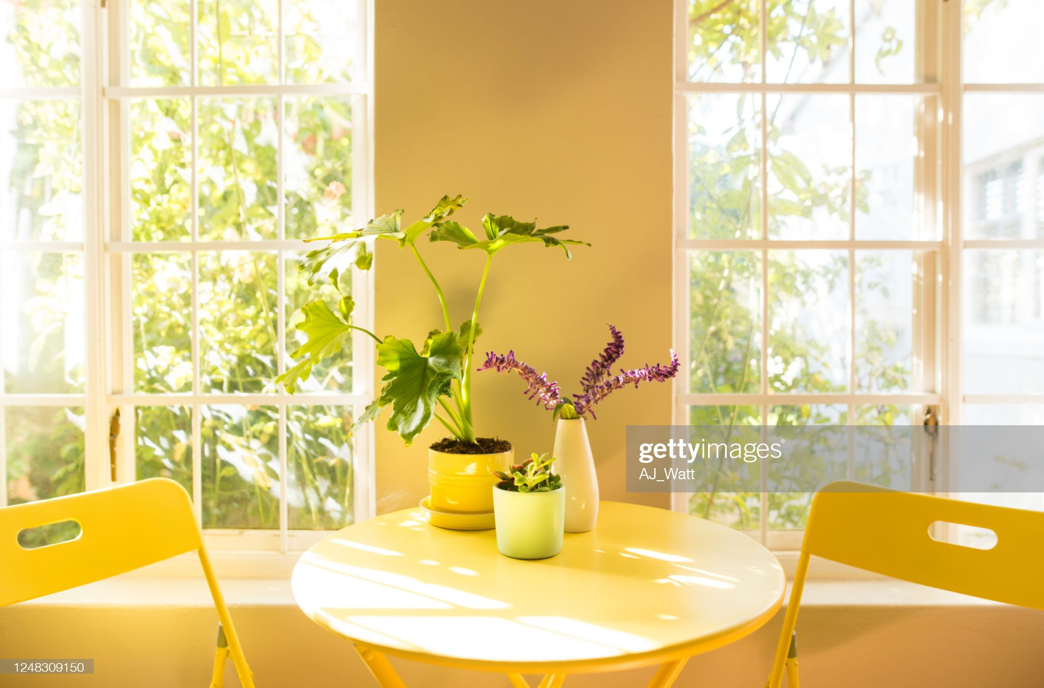 Coffee table and chair in an apartment : Stock Photo