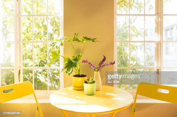 coffee table and chair in an apartment - small apartment stock pictures, royalty-free photos & images