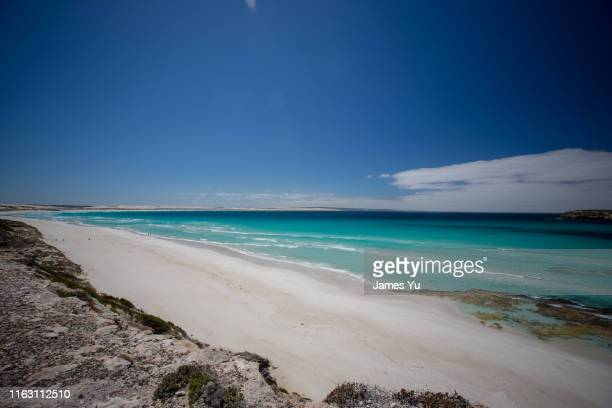 coffin bay national park - coffin stock pictures, royalty-free photos & images