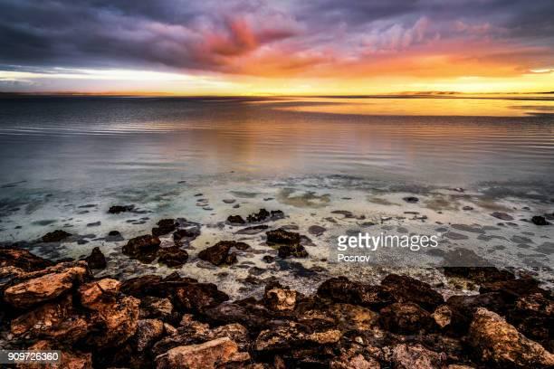 coffin bay - porto lincoln - fotografias e filmes do acervo