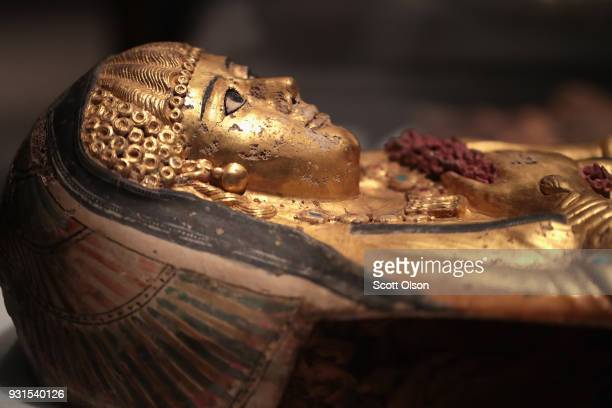 A coffin containing the mummy of a young girl is displayed at the Field Museum on March 13 2018 in Chicago Illinois The artifact is part of the new...