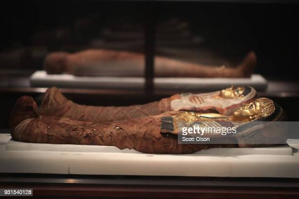 Coffins holding the mummies of a brother and sister from Egypt are displayed at the Field Museum on March 13 2018 in Chicago Illinois The artifacts...