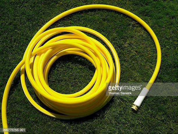 Coiled garden hose on grass, overhead view