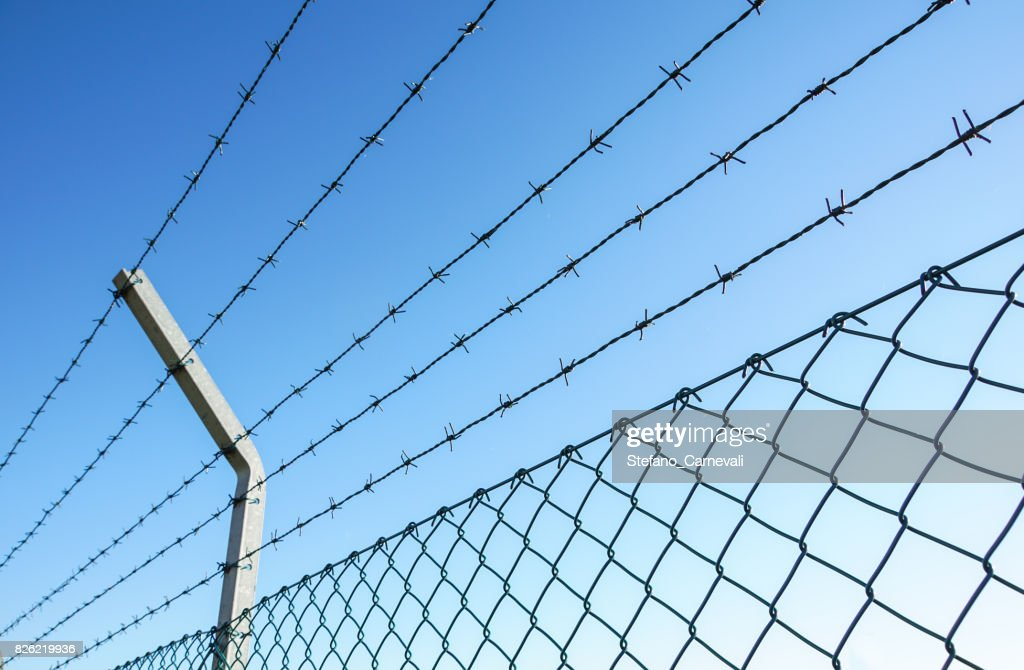Coiled Razor Wire With Its Sharp Steel Barbs On Top Of A Mesh ...