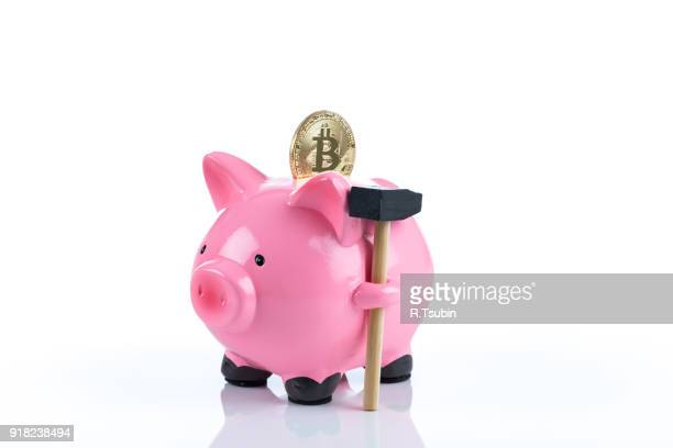 coin coin and a piggy bank
