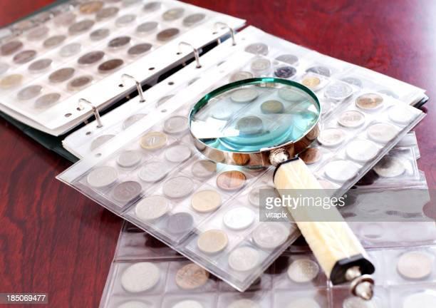 Botón colección en la tabla