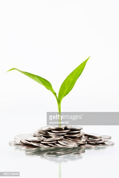 コインと植物 - スウェーデン通貨 ストックフォトと画像