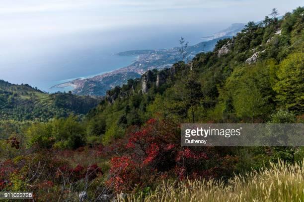 Col du Berceau, French Riviera