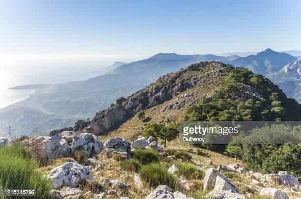 col du berceau, montagne proche de menton, france - provence alpes côte d'azur - fotografias e filmes do acervo