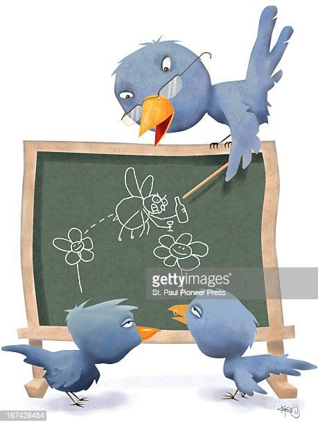 4 col x 115 in / 220x292 mm / 749x994 pixels Kirk Lyttle color illustration of parent bird teaching his disinterested chicks about the dangers of...