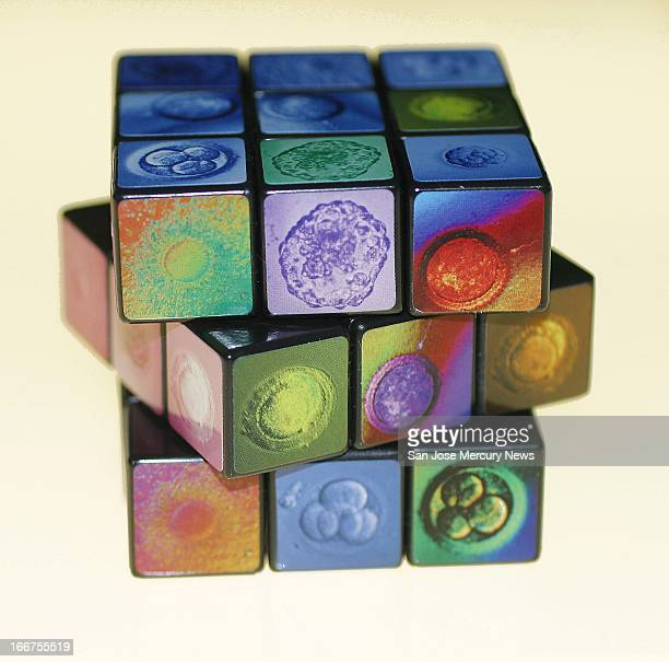 6 col x 115 in / 295x292 mm / 1004x994 pixels Staff color photo illustration of Rubix Cube with different stages of stem cell development painted...