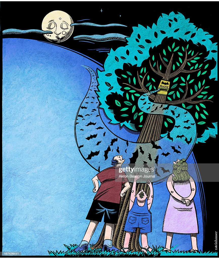5 col x 12.75 in / 276x324 mm / 940x1102 pixels Rick Steinhauser color illustration of a young family watching bats emerge from a bat house on a moonlit night.