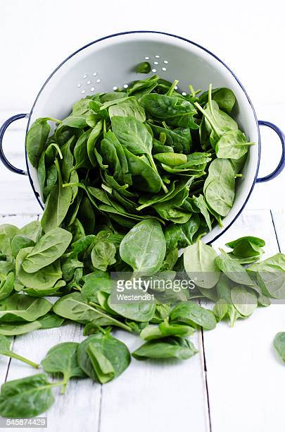 colander and fresh spinach leaves - spinach stock photos and pictures