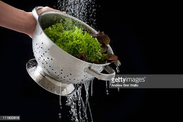 colander of lettuce held under running water
