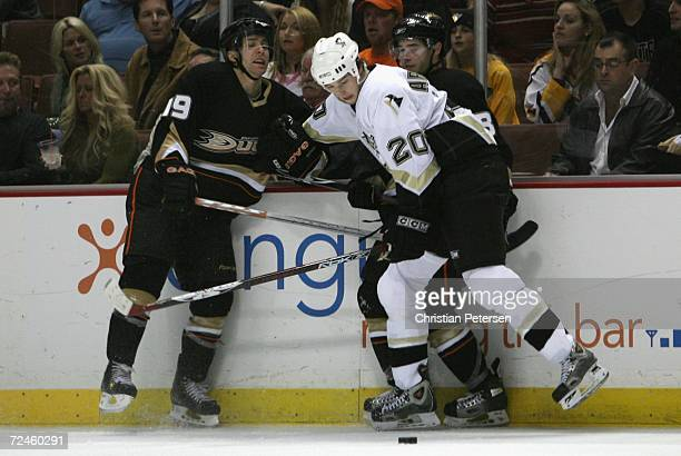 Colby Armstrong of the Pittsburgh Penguins checks Andy McDonald and Ryan Shannon of the Anaheim Ducks off the puck during the NHL game held on...