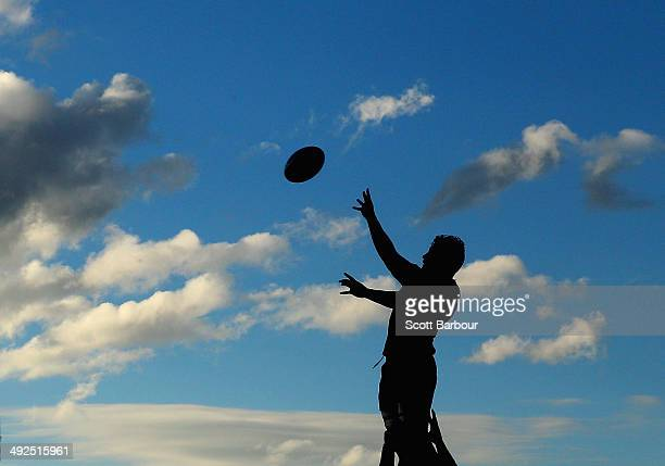 Colby Fainga'a of the Rebels is lifted in the air to compete for the ball in a lineout during a Melbourne Rebels Super Rugby training session at Visy...