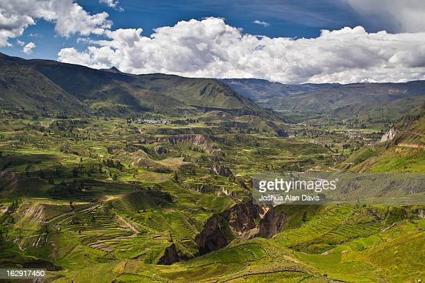 colca canyon - joshua alan davis stock pictures, royalty-free photos & images
