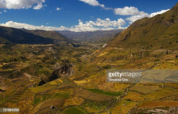 colca valley - timothee stock pictures, royalty-free photos & images