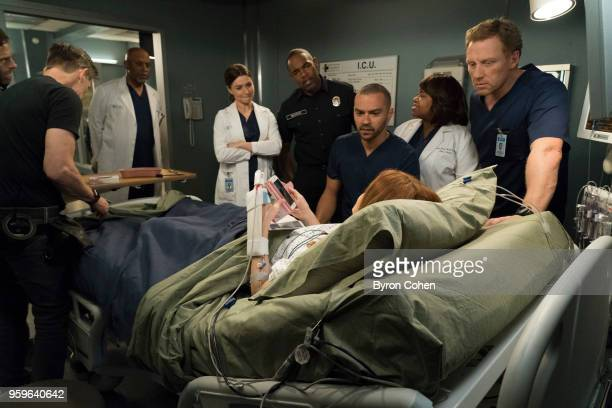 S ANATOMY Cold as Ice One of Grey Sloan Memorial's own is seriously injured making the team reflect on what is truly important to them Meanwhile...