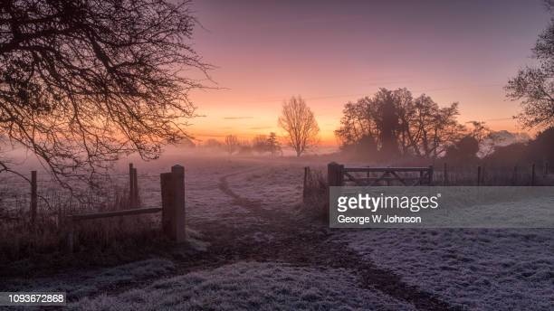 cold dawn sunrise - essex england stock pictures, royalty-free photos & images