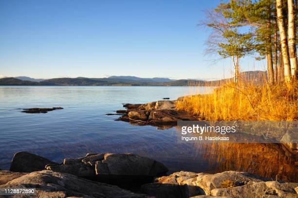 cold day with nice weather in late autumn by lake follsjo. sunlit straw by the water end. reflection of the setting sun in the water. - hill range stock pictures, royalty-free photos & images