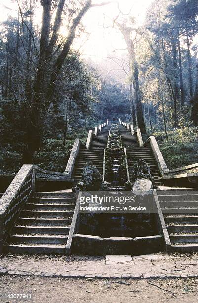 Cold Fountain in the Bucaco Forest with its monumental staircase from the 19th century leading to a small chapel on the top in the middle of the...