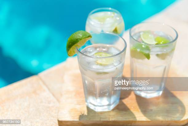 Cold Gin and Tonic with fresh line and ice