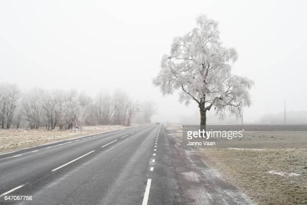 Kall morgon på vägen
