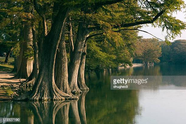 frio river 5 - hill stock pictures, royalty-free photos & images